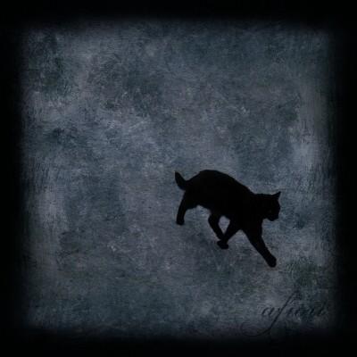 wpid-svart+katt+målad+3+liten