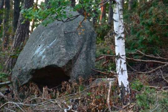Röda sten och kalhygget 065