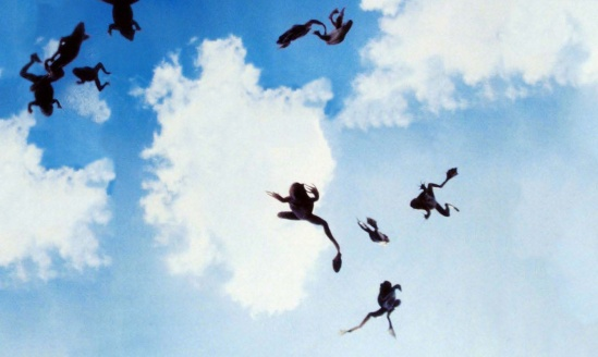 Frogs-falling-from-the-sky-magnolia-31608118-1338-801-1