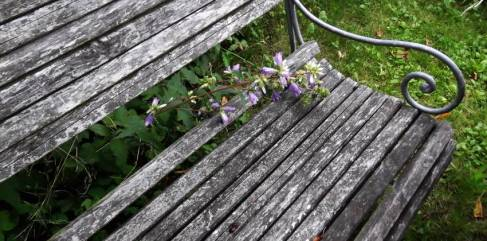 trädgårdsmöbler 1 - Kopia