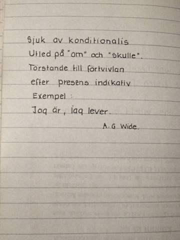 diktböckerna 017