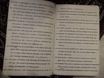 diktböckerna 026