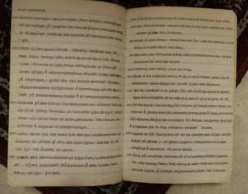 diktböckerna 028