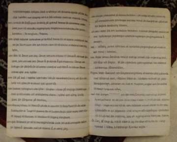 diktböckerna 029