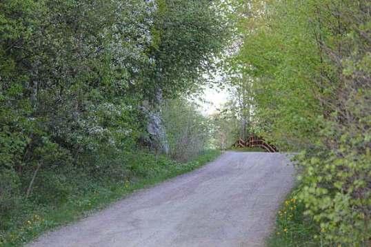 treblad, promenad 057